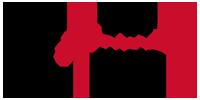 the feminine view logo